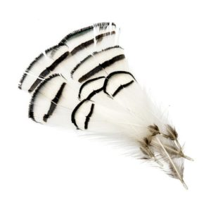 Fishing Life Silver Pheasant Tippets